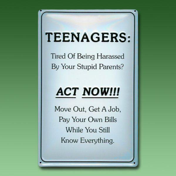 Spass Spruche Blechschild Teenager